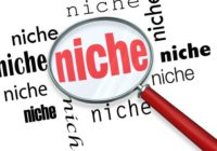 8 Most Profitable Niches for Online Business